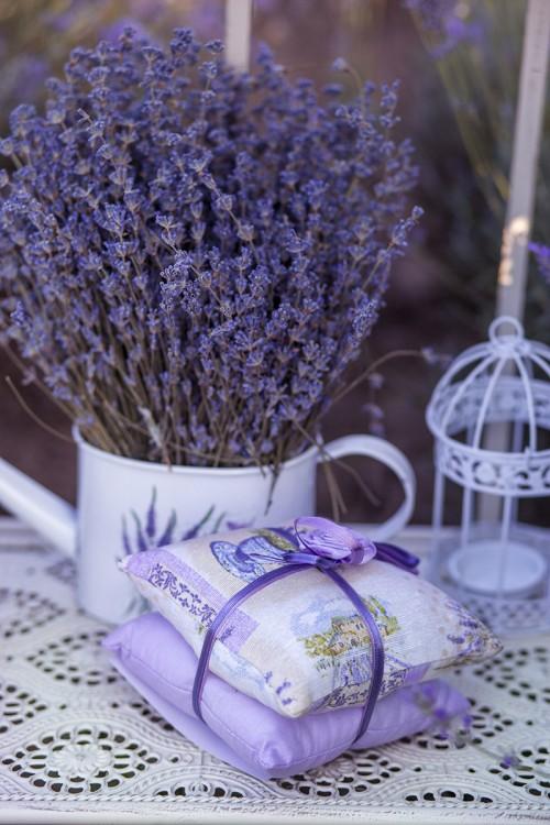 Lansarea colecției Lavender Corner