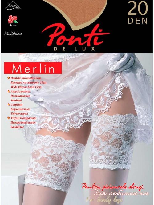 merlin-20-den